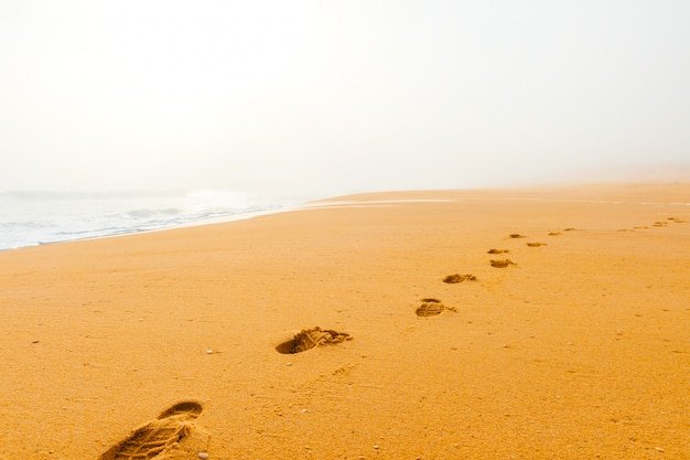 Paisaje marino pintoresco de niebla brumosa playa salvaje abandonada. arte hermoso paisaje de costas desiertas con olas oceánicas. desolada costa mediterránea.