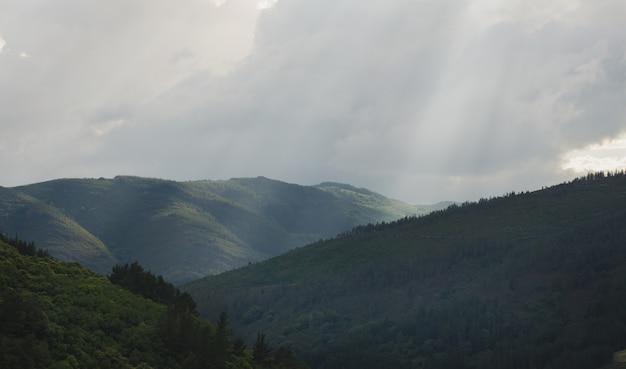 Paisaje de montaña con árboles.