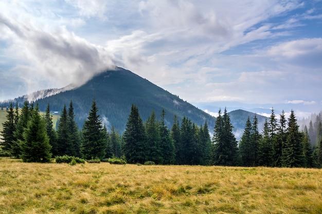 Paisaje de montaña en buen tiempo soleado. visión desde el valle herboso verde de la alta montaña cubierto con las nubes de niebla blancas. concepto de belleza de la naturaleza, turismo, viajes y preservación del medio ambiente.