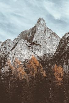 Paisaje de montaña gris