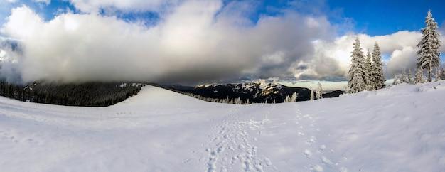 Paisaje de montaña de invierno con pinos nevados y nubes bajas