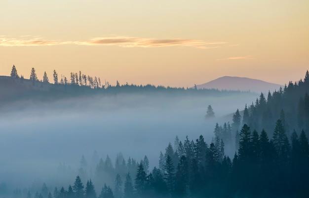 Paisaje de montaña de verano. niebla de la mañana sobre las colinas azules de la montaña cubiertas de denso bosque de abetos brumosos en el cielo de color rosa brillante en el fondo del espacio de la copia del amanecer.
