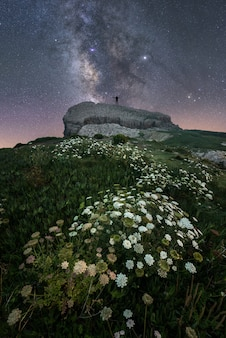 Paisaje montañoso lleno de flores y una persona mirando el cielo estrellado.