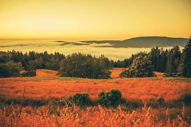 Paisaje de niebla en la puesta del sol