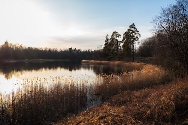 Paisaje nocturno tranquilo con un lago a principios de primavera