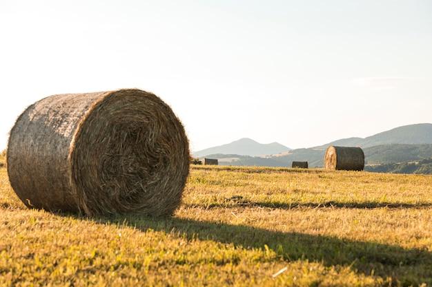 Paisaje otoñal con grandes rollos de hays