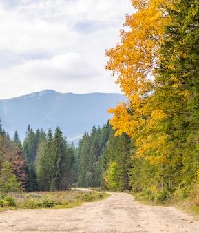 El paisaje de otoño de montaña con bosque colorido