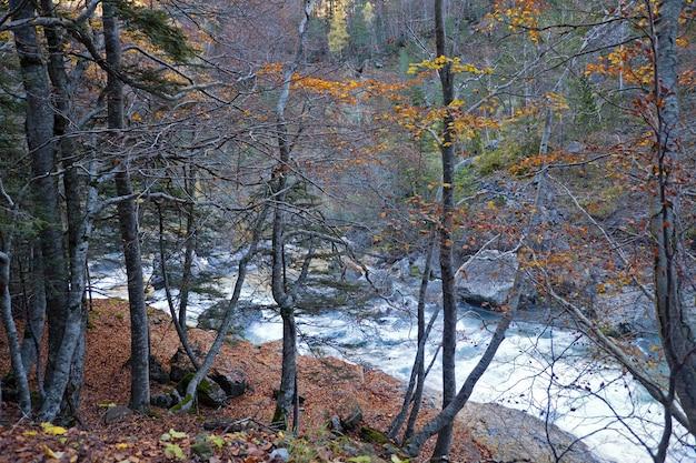 Paisaje de otoño en el parque nacional de ordesa, pirineos, huesca, aragón, españa