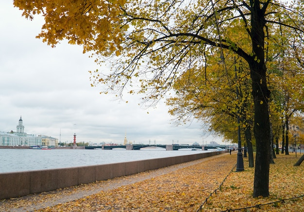 Paisaje de otoño, san petersburgo.