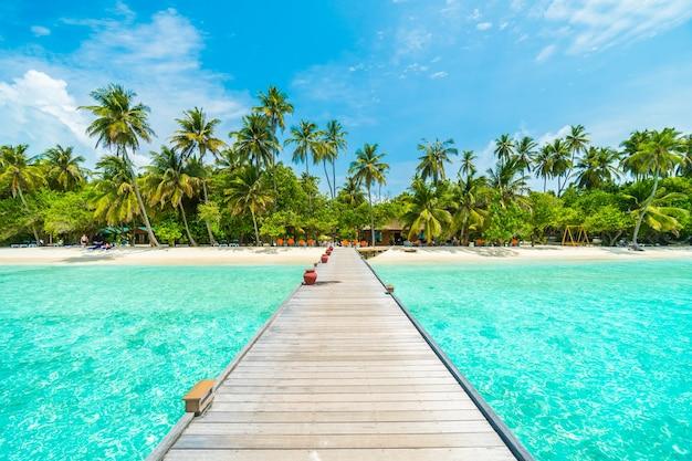 Paisaje palma tropical vacaciones verano