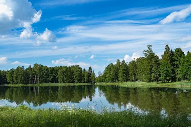 Paisaje panorámico de verano en el lago. paisaje brillante de verano con un lago, vegetación y nubes. maravilloso lago con reflejo de árboles. nubes blancas en un cielo azul.