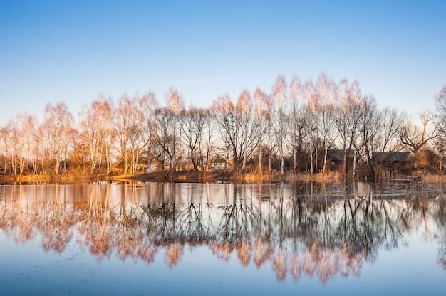 Paisaje con reflejo de árboles en el agua y el cielo azul