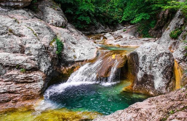 Paisaje de ríos de montaña en el bosque