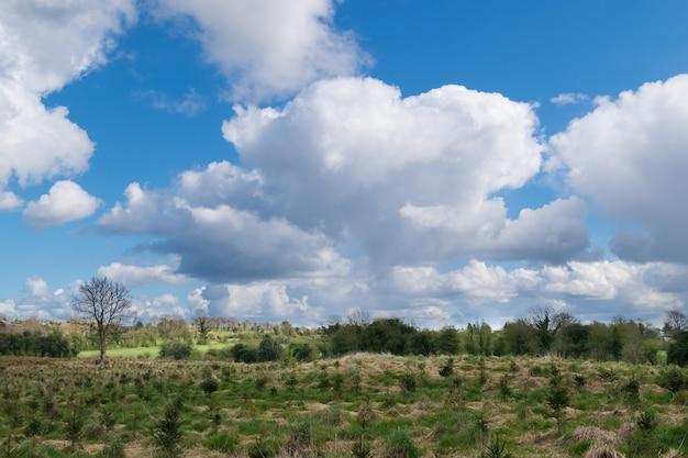 Paisaje rural de campo con cielo azul y nublado.