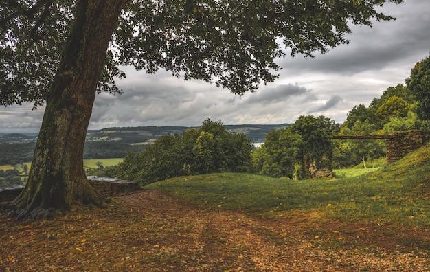 Paisaje rural francés con árboles.