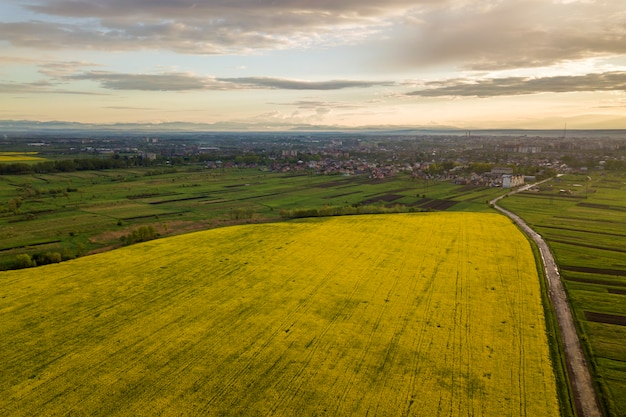Paisaje rural en primavera o verano. vista aérea de campos verdes, arados y florecientes, techos de casas y un camino en el amanecer soleado. fotografía de drones.