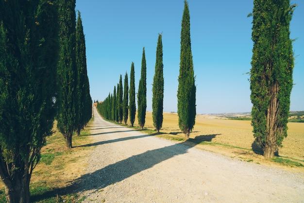 Paisaje de toscana del camino de los cipreses en italia.