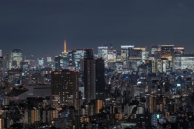 Paisaje urbano de tokio que puede ver la torre de tokio en la lejanía, tomando del árbol de tokio del cielo al este, japón