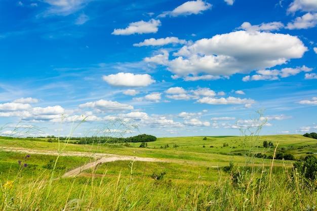 Paisaje de verano con prados, caminos y bosques y un cielo azul claro con nubes. viaje local