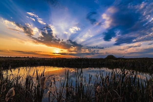 Paisaje de verano con el reflejo de la puesta del sol y los rayos del sol en el agua del estanque