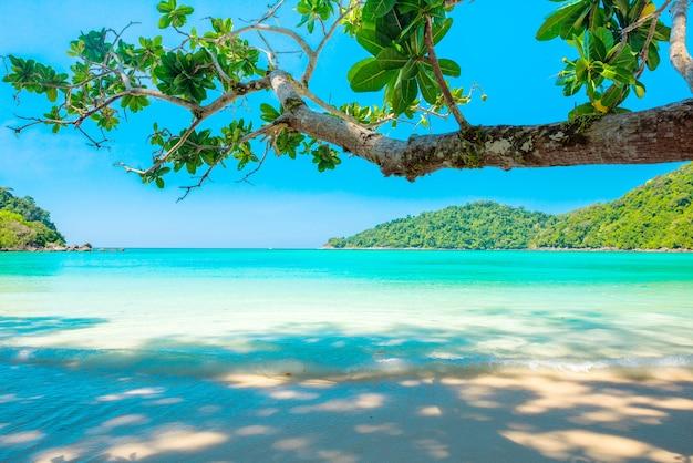 Paisajes de la playa y la isla