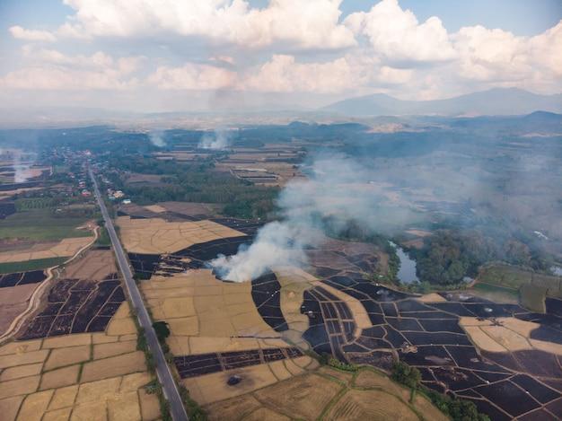 Paja de arroz quemado en el campo de la agricultura