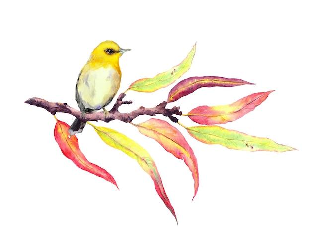 Pájaro de canción lindo en la ramita de otoño con hojas rojas y amarillas. color de agua