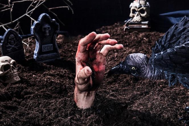 Pájaro espeluznante que intenta morder la mano de zombie en el cementerio de halloween