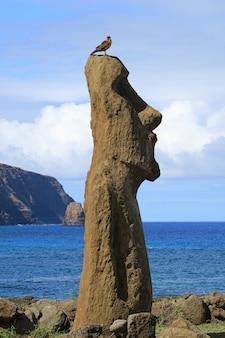 Pájaro posado sobre la cabeza de moai con el océano pacífico en el fondo, ahu tongariki, isla de pascua, chile