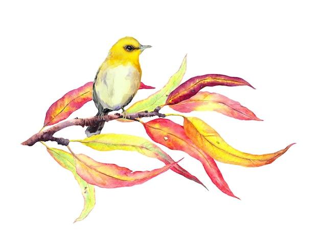 Pájaro en rama de otoño con hojas rojas y amarillas. acuarela