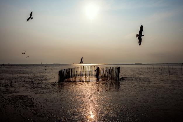 Pájaros volando sobre un lago