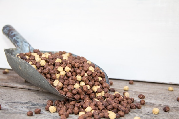 Pala de pala cargada de pellets alimento equilibrado para perros y gatos