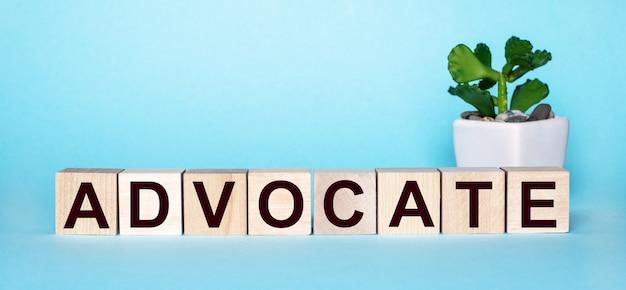 La palabra advocate está escrita en cubos de madera cerca de una flor en una maceta sobre un fondo azul claro