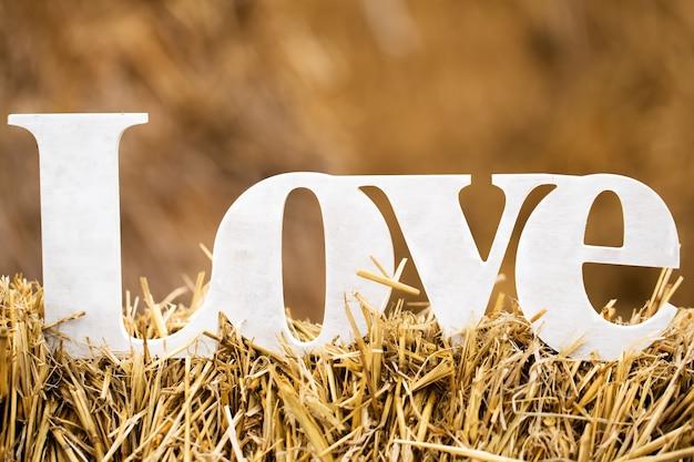 La palabra amor vale el pajar en el pueblo.