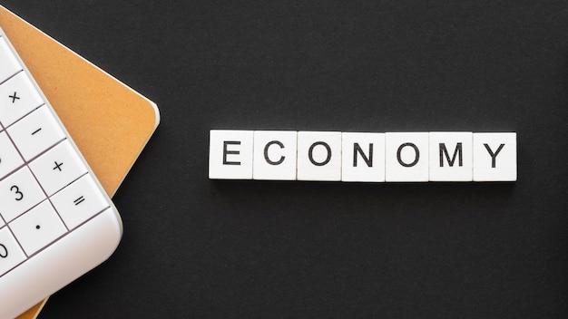 Palabra de economía laicos plana escrita en cubos de madera