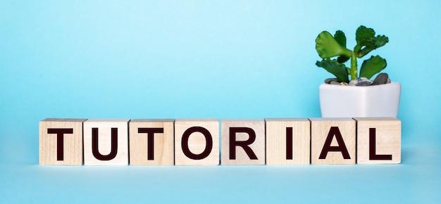 La palabra tutorial está escrita en cubos de madera cerca de una flor en una maceta sobre una superficie azul claro