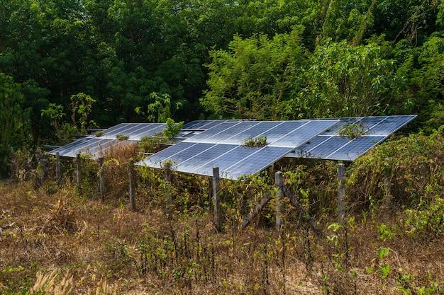 Panel solar y naturaleza.