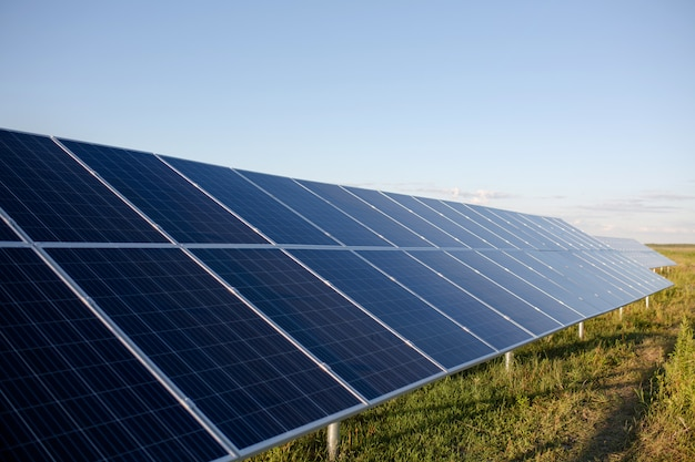 Paneles de células solares en el campo.