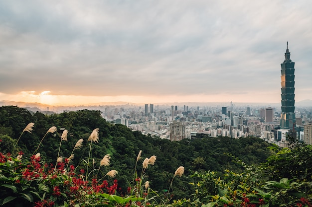 Panorama aéreo sobre el centro de taipei con taipei 101 rascacielos con árboles en la montaña y flores de hierba