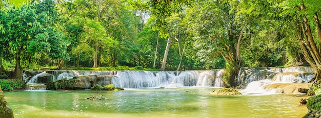 Panorama cascada en bosque en la montaña en bosque tropical