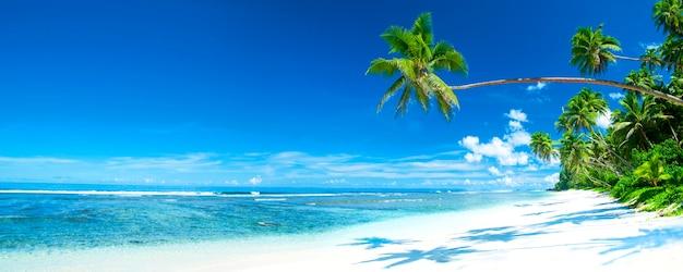 Panorama de destino de playa tropical.