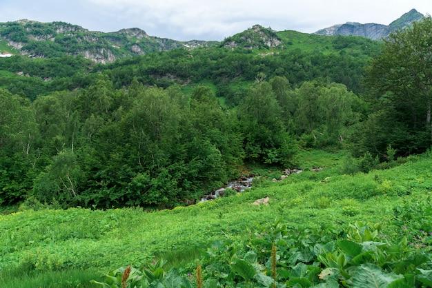 Panorama de la montaña