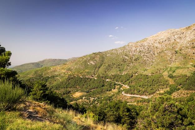 Panorámica de unas hermosas montañas verdes con senderos y piedras