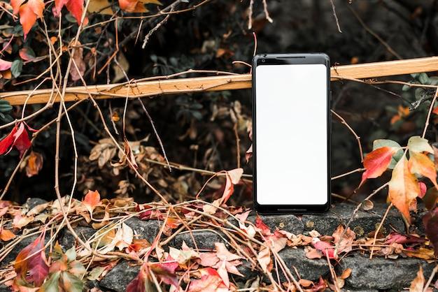 Pantalla blanca con teléfono móvil cerca de las hojas otoñales.