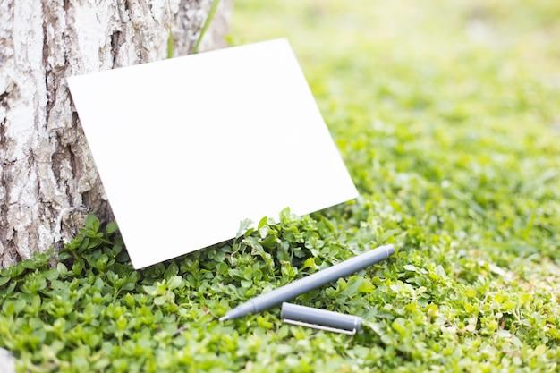 Papel en blanco sobre la hierba verde.