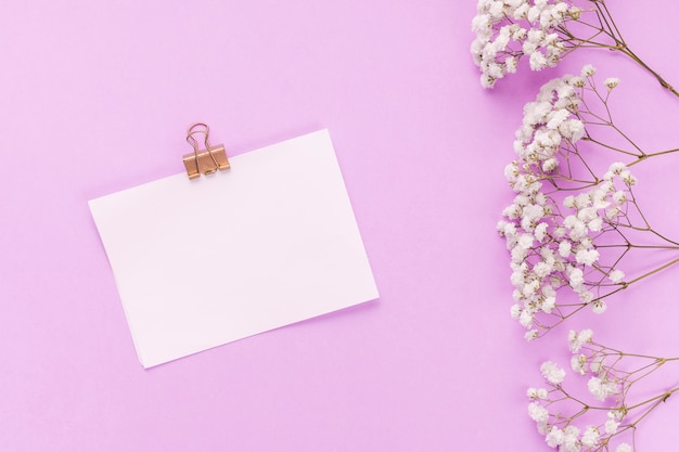 Papel con ramas de flores en mesa rosa
