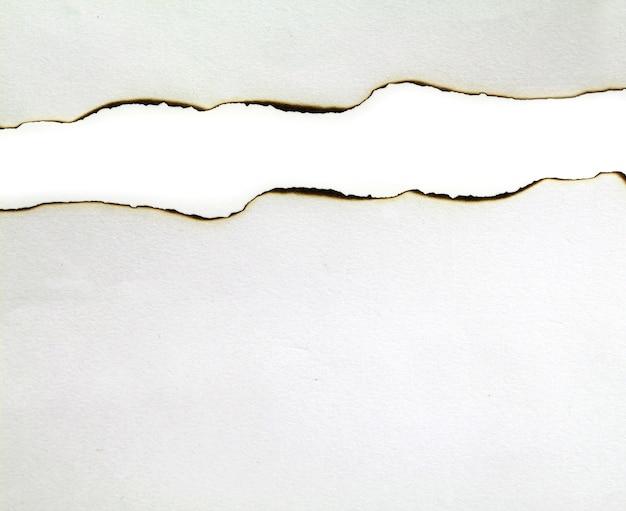 Papel rasgado aislado sobre fondo blanco