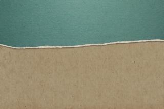 Papel rasgado la textura del fondo