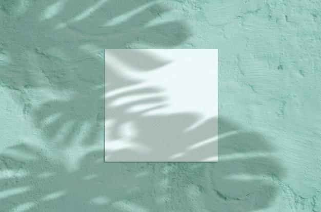 Papelería moderna luz del sol de verano sobre fondo de menta grunge
