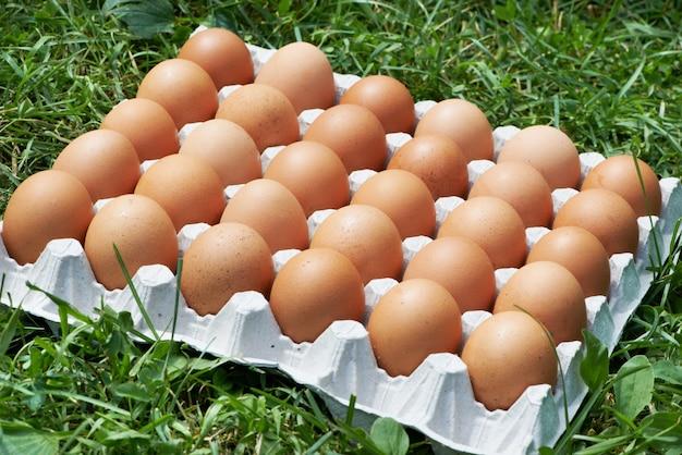 Paquete de huevos